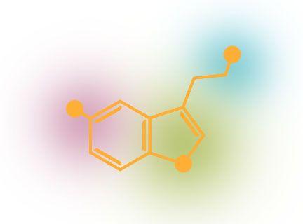 Serotonin skeletal